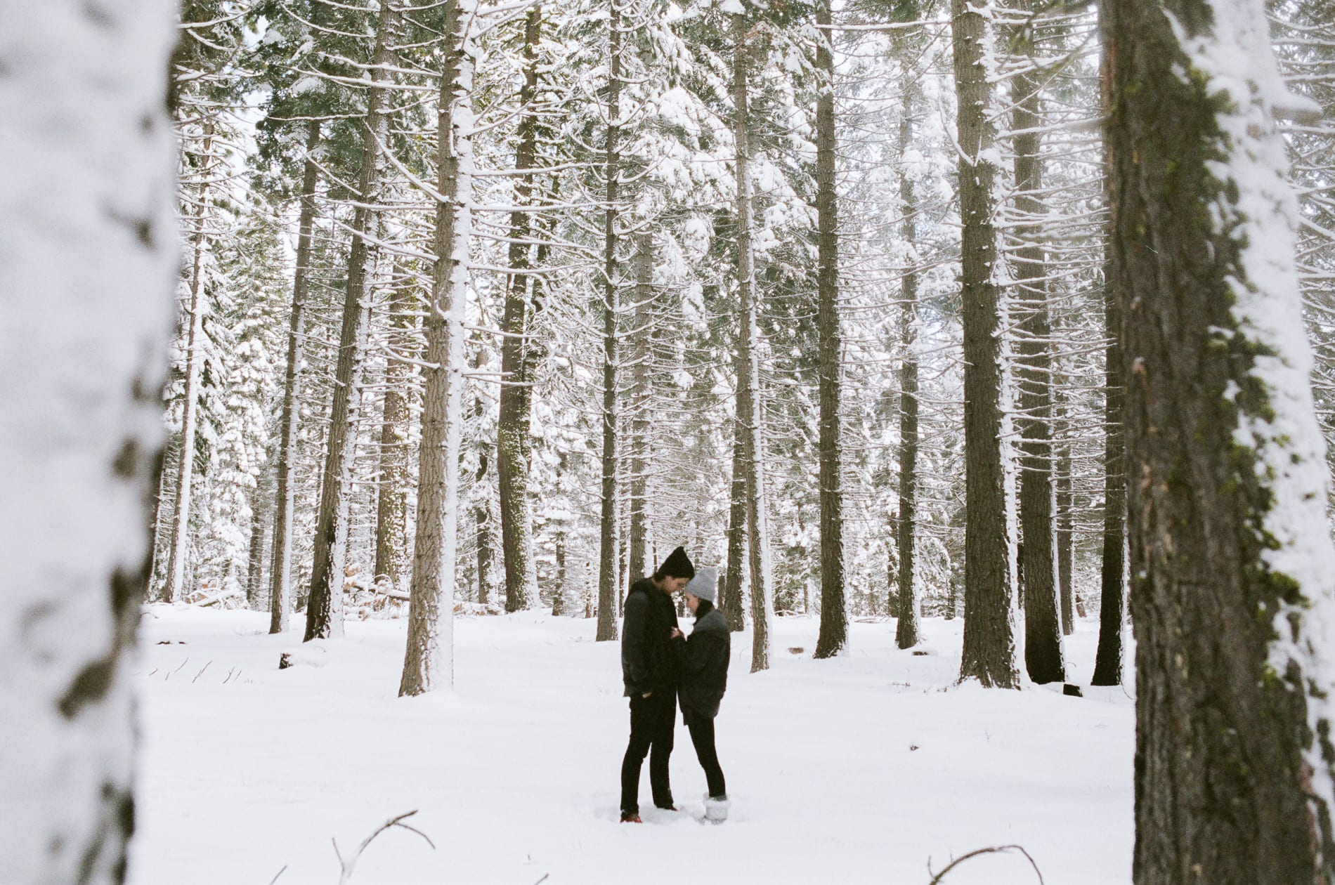 mt-lassen-winter-snow-couples-photo-19