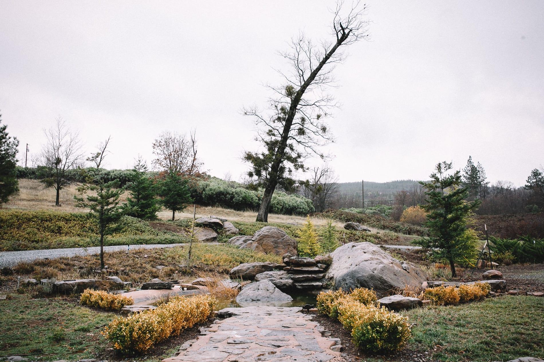 morrow-ranch-round-mountain-wedding-photo-1