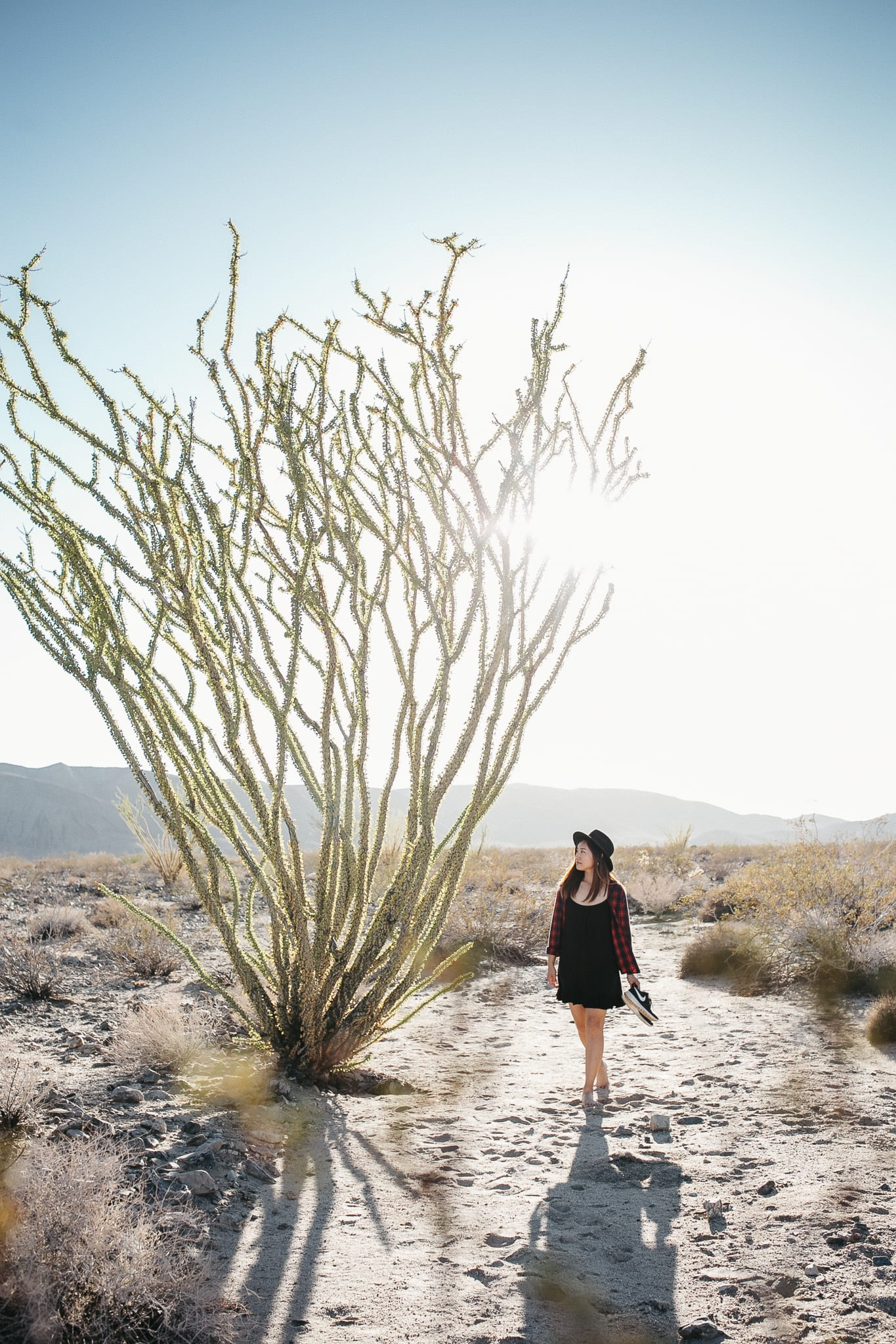 jc3-joshua-tree-california-lifestyle-portrait-photographer-1