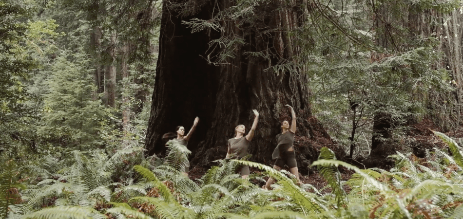 """Planets"" by Joseph Dance Video 