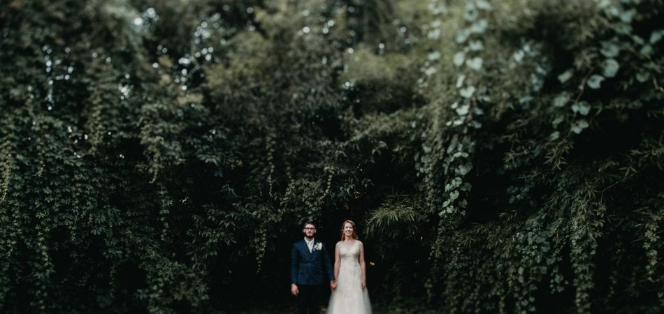 Stephen + Stephanie | The Flower Farm Inn Loomis California Wedding Photographer
