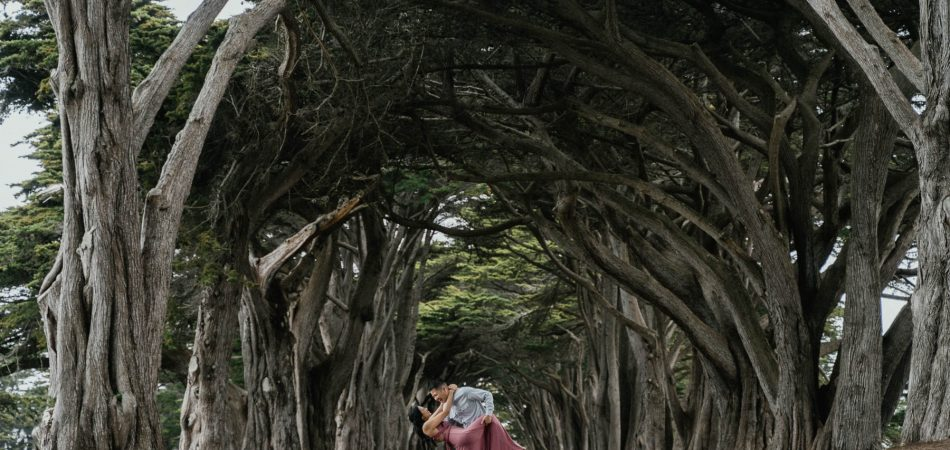 Cypress Tree Tunnel l Point Reyes CA | Wedding Photographer